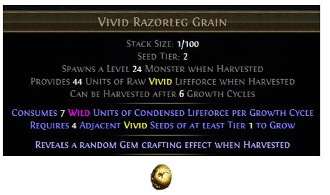 Vivid Razorleg Grain
