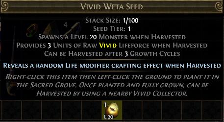 Vivid Weta Seed