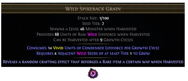 Wild Spikeback Grain