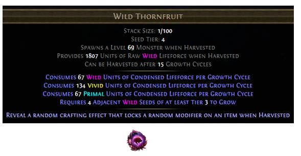 Wild Thornfruit