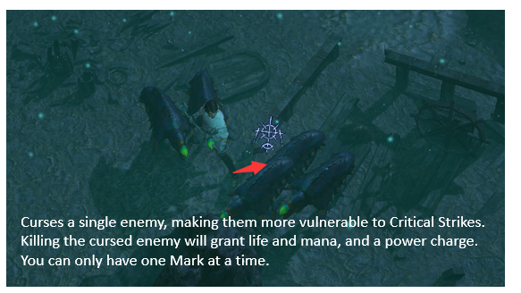 Assassin's Mark Build