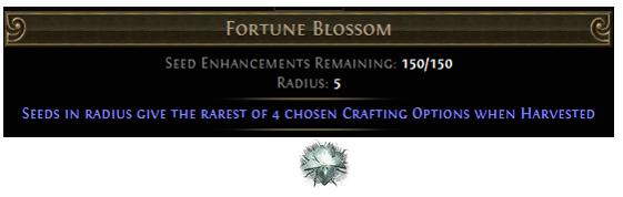 Fortune Blossom