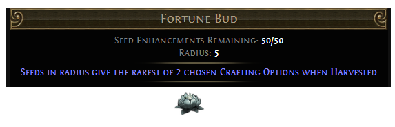 Fortune Bud