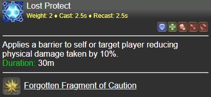 Lost Protect FFXIV
