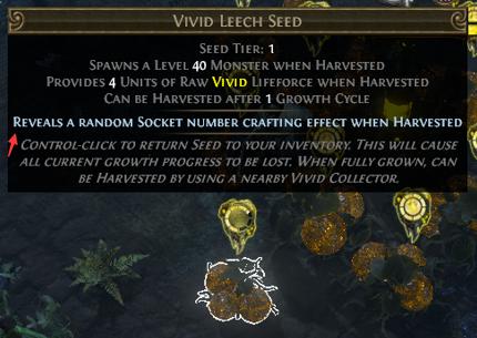Socket Number Harvest