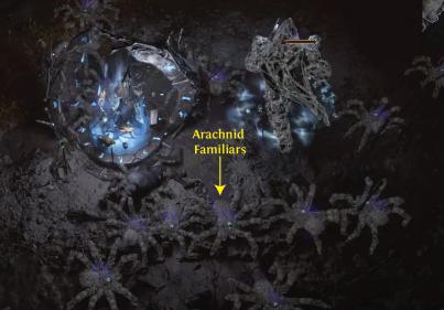 Summoned Arachnid Familiars PoE