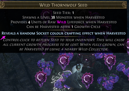 Wild Thornwolf Seed Crafting